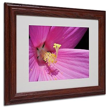 Trademark Fine Art 'Inside a Pink Hibiscus' 11