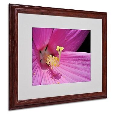 Trademark Fine Art 'Inside a Pink Hibiscus' 16