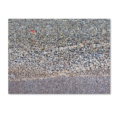 Trademark Fine Art 'Lakeshore Abstract' 22