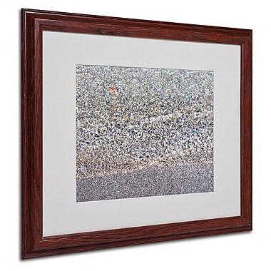 Trademark Fine Art 'Lakeshore Abstract' 16