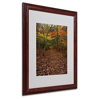 Trademark Fine Art 'Late Autumn Hike' 16