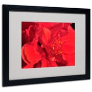 Trademark Fine Art 'Red Red Hibiscus' 16 x 20 Black Frame Art