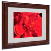 "Trademark Fine Art 'Red Red Hibiscus' 11"" x 14"" Wood Frame Art"