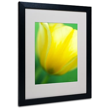 Trademark Fine Art 'Hint of a Tulip' 16
