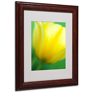 Trademark Fine Art 'Hint of a Tulip' 11