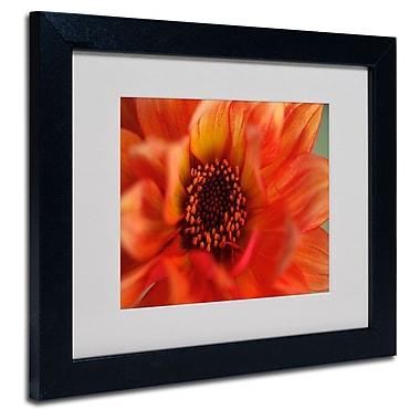 Trademark Fine Art 'Fiery Dahlia'
