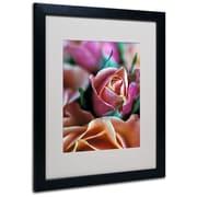 "Trademark Fine Art 'Mauve and Peach Roses' 16"" x 20"" Black Frame Art"