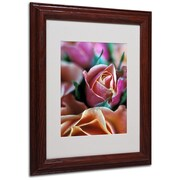 "Trademark Fine Art 'Mauve and Peach Roses' 11"" x 14"" Wood Frame Art"