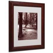 "Trademark Fine Art 'Jardin du Luxembourg Chairs' 11"" x 14"" Wood Frame Art"