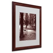 "Trademark Fine Art 'Jardin du Luxembourg Chairs' 16"" x 20"" Wood Frame Art"