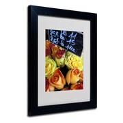 Trademark Fine Art 'Paris Roses'