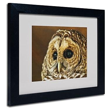 Trademark Fine Art 'Barred Owl Portrait'