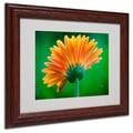 Trademark Fine Art 'Orange Burst' 11in. x 14in. Wood Frame Art