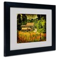 Trademark Fine Art 'Country Road In Summer' 11in. x 14in. Black Frame Art
