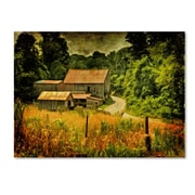 "Trademark Fine Art 'Country Road In Summer' 30"" x 47"" Canvas Art"