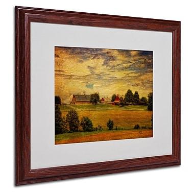 Trademark Fine Art 'Summer Farm' 16