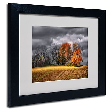 Trademark Fine Art 'Autumn Field'
