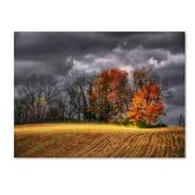 "Trademark Fine Art 'Autumn Field' 16"" x 24"" Canvas Art"