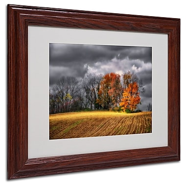 Trademark Fine Art 'Autumn Field' 11