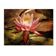 "Trademark Fine Art 'Magic Lily' 30"" x 47"" Canvas Art"