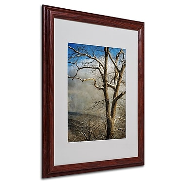 Trademark Fine Art 'Tree In Winter' 16