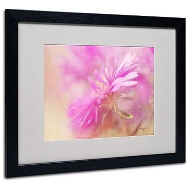 Trademark Fine Art 'Dewy Pink Aster' 16