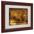 Trademark Fine Art 'Back Roads' 11in. x 14in. Wood Frame Art