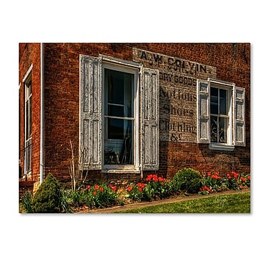 Trademark Fine Art 'Country Store' 22