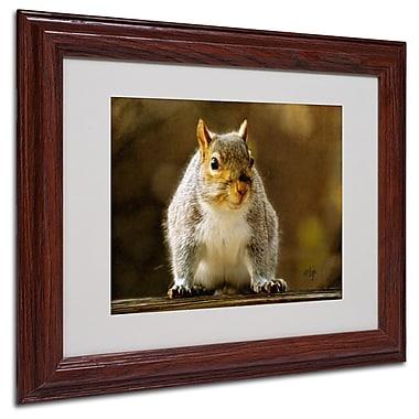 Trademark Fine Art 'Smiling Squirrel' 11