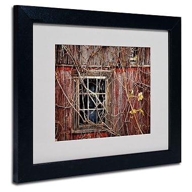 Trademark Fine Art 'Old Barn Window' 11