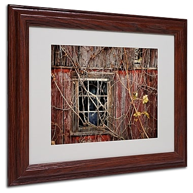 Trademark Fine Art 'Old Barn Window' 11