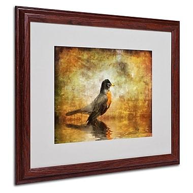 Trademark Fine Art 'The Robin' 16