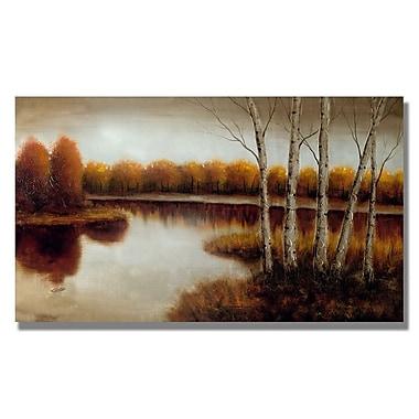 Trademark Fine Art 'Splendor' 24