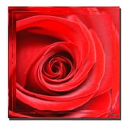 "Trademark Fine Art 'Cadmium Red II' 24"" x 24"" Canvas Art"