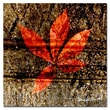 Trademark Fine Art ' Red Leaves I' 18in. x 18in. Canvas Art