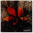 Trademark Fine Art ' Red Leaves III' 18in. x 18in. Canvas Art