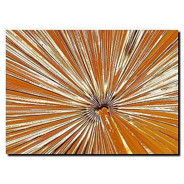 Trademark Fine Art 'Pines IV' 18