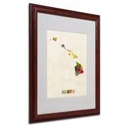 """Trademark Fine Art 'Hawaii Map' 16"""" x 20"""" Wood Frame Art"""