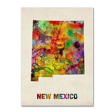 Trademark Fine Art 'New Mexico Map' 24
