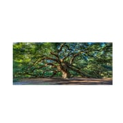 "Trademark Fine Art 'Angel Oak Charleston' 12"" x 24"" Canvas Art"