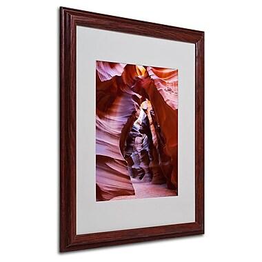 Trademark Fine Art 'Antelope' 16
