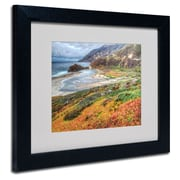 "Trademark Fine Art 'Bigsur California' 11"" x 14"" Black Frame Art"