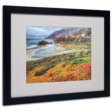 Trademark Fine Art 'Bigsur California' 16