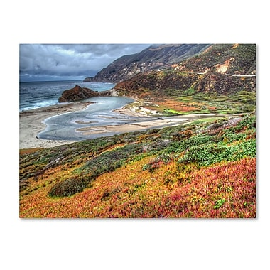 Trademark Fine Art 'Bigsur California' 30