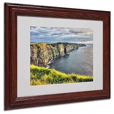 Trademark Fine Art 'Cliffs of Moher Ireland' 11