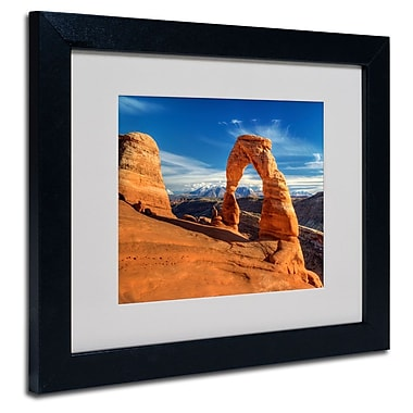 Trademark Fine Art 'Delicate Arch'