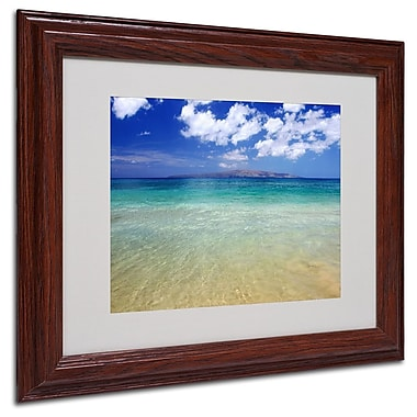 Trademark Fine Art 'Hawaii Blue Beach' 11