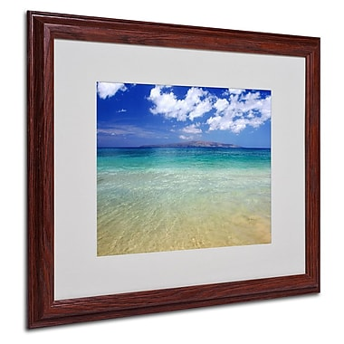 Trademark Fine Art 'Hawaii Blue Beach' 16