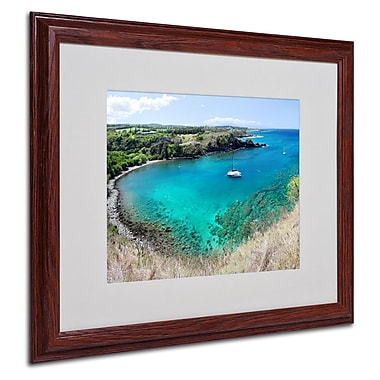 Trademark Fine Art 'Honolua Bay' 16