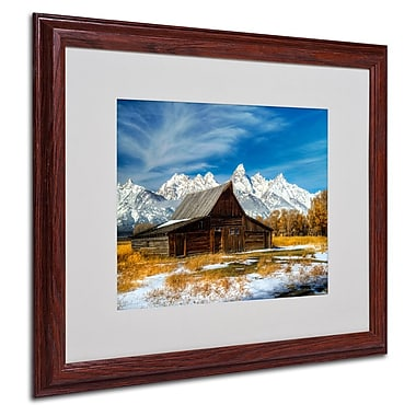Trademark Fine Art 'Iconic Barn Grand Teton' 16